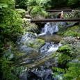 8:払沢の滝_2