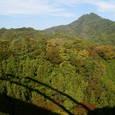 6:西沢大橋から見上げる